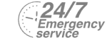 24/7 Emergency Service Pest Control in North Feltham, East Bedfont, TW14. Call Now! 020 8166 9746