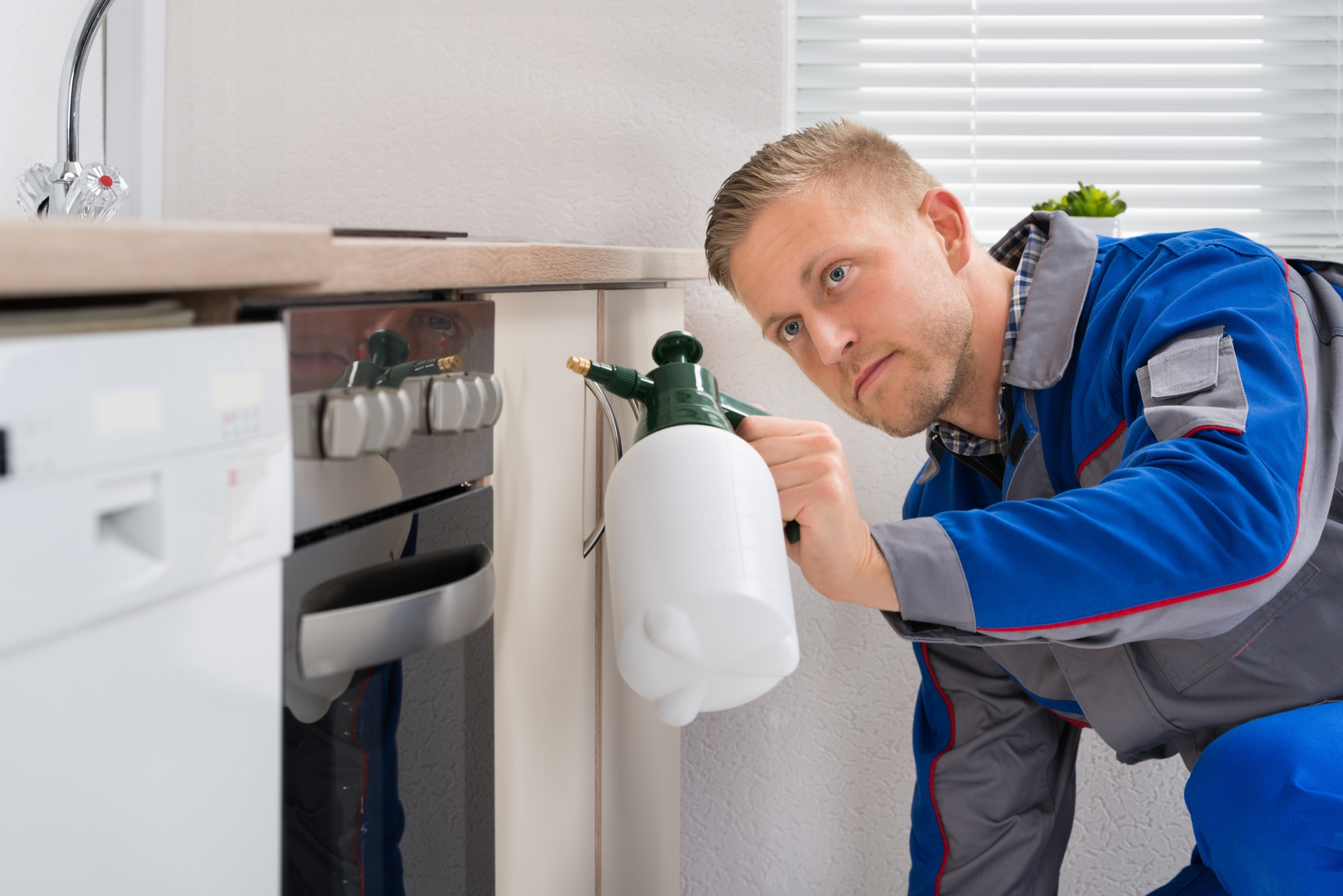 Pest Inspection, Pest Control in North Feltham, East Bedfont, TW14. Call Now 020 8166 9746